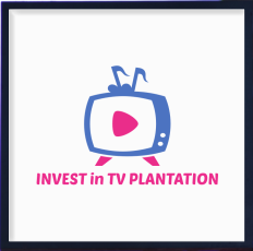 TInvest in TV Plantation as little as $250